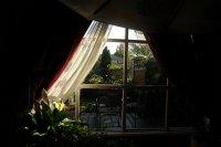 zasłony na oknie